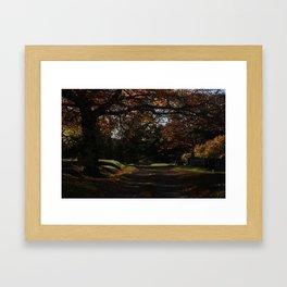 remembering Framed Art Print