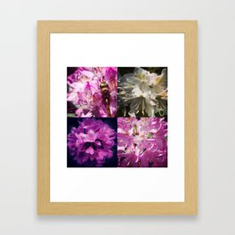 Rhododendron & dragonfly Framed Art Print