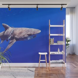 Fish Are Friends, Not Food Wall Mural
