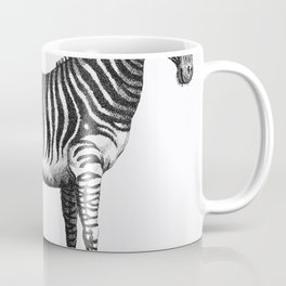 Illustration of Zebra from Zoological lectures delivered at the Royal institution in the years 1806- Coffee Mug