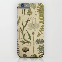 Ferns And Mosses iPhone Case