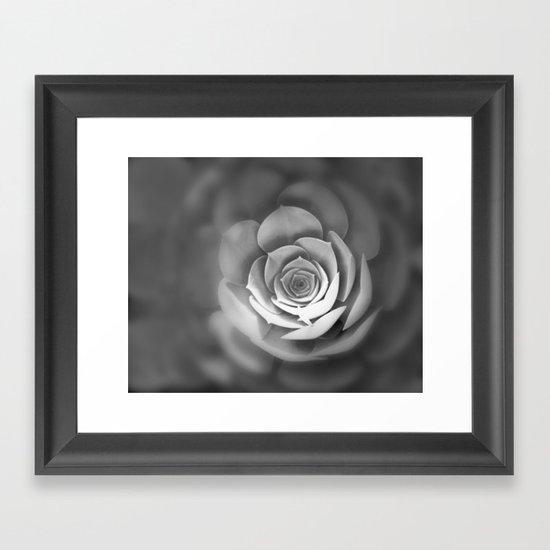 Sempervivum Framed Art Print