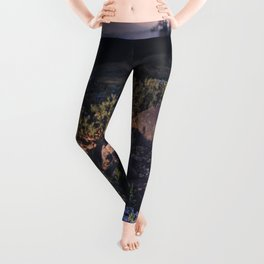 Wildflowers at Dawn - Nature Photography Leggings