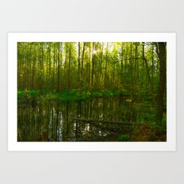 Spring mirror water of a forest river Art Print