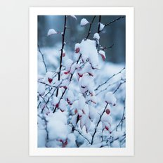 Winter Branches 2 Art Print