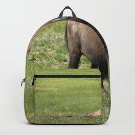 A Big Guy Backpack