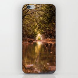 Water ways iPhone Skin