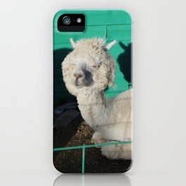 Fluff head iPhone Case