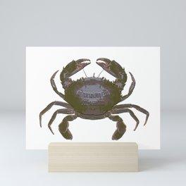 Mud Crab Scylla serrata by Chrissy Wild Mini Art Print