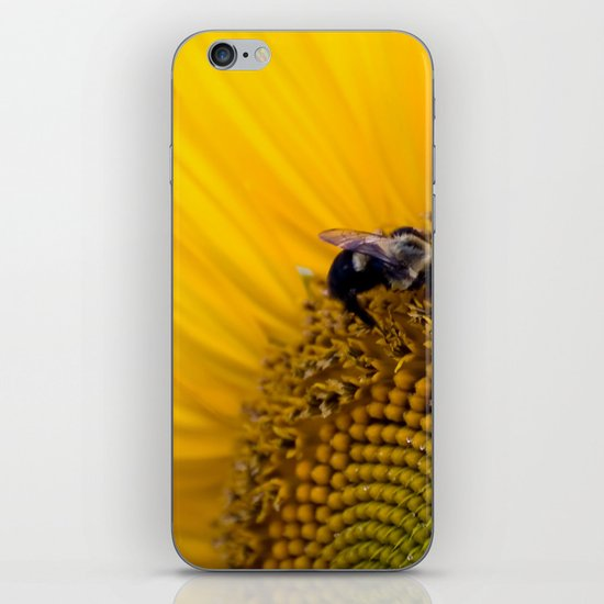 Summers End iPhone & iPod Skin