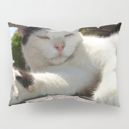Black and White Bicolor Cat Lounging on A Park Bench Pillow Sham