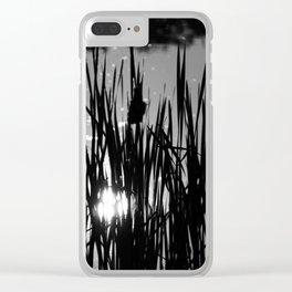 Cat tails Clear iPhone Case