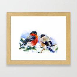 Bullfinches in winter time. Christmas Watercolor Art Framed Art Print