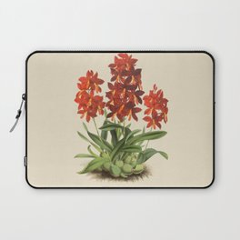 R. Warner & B.S. Williams - The Orchid Album - vol 01 - plate 004 Laptop Sleeve