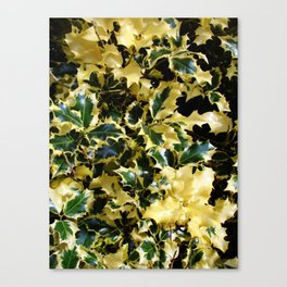 Marbled Thorns Canvas Print