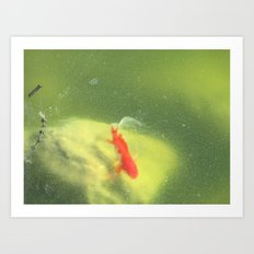 Life under the Ice Art Print