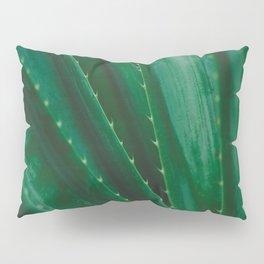 Pandanus Spiralis Pillow Sham