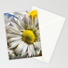 DAISY FLOWER &  DAISY FLOWER Stationery Cards