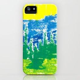 Intense  landscape iPhone Case