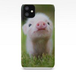 Little Pig iPhone Case