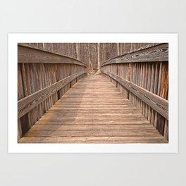 Cunningham Forest Bridge Art Print