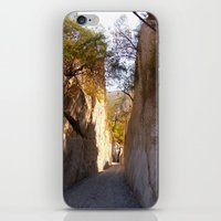 mexican iPhone & iPod Skins featuring Mexican desert by lennyfdzz