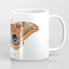 Polyphemus Moth (Antheraea polyphemus) II Coffee Mug