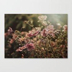Summer Sonnet Canvas Print
