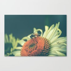 Summer Dance Canvas Print