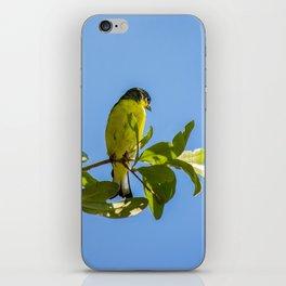 Yellow Bird - II iPhone Skin
