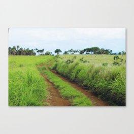 Tonga III Canvas Print