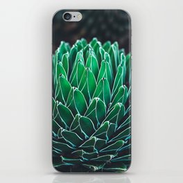 nature poster. succulent close-up iPhone Skin