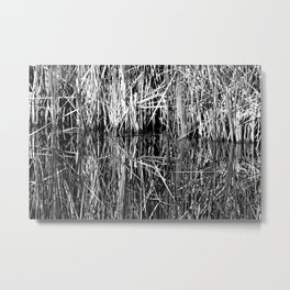 Reed Reflection Metal Print