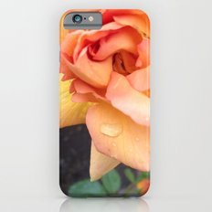 Orange Rose iPhone 6s Slim Case