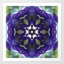 Blue columbine mandala 2 Art Print