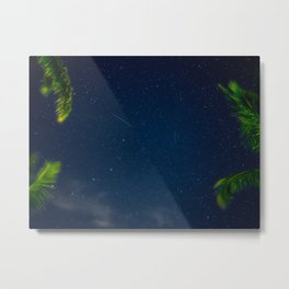 Blue Night Sky With Palm Trees And Stars Metal Print