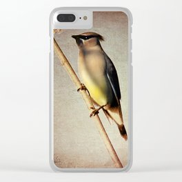 Rustic Cedar Waxwing A397 Clear iPhone Case