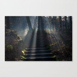 National Park Hoge Veluwe Canvas Print