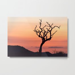 Sunset over Madikwe Metal Print