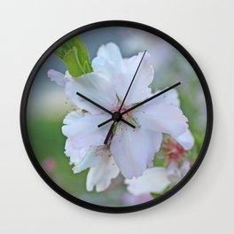 Almond tree flower blooming Wall Clock