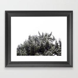 Snowy Framed Art Print