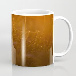 Early morning on the tips of the grass. Coffee Mug