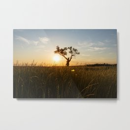 Within the silence, I am found. Metal Print