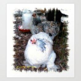 Bantam Cochin Chickens Art Print
