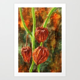 Winter cherry Art Print
