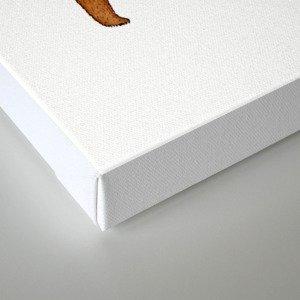 the spherical bear Canvas Print