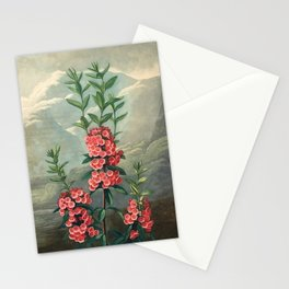 Pink Floral The Narrow-leaved Kalmia : Temple of Flora Stationery Cards
