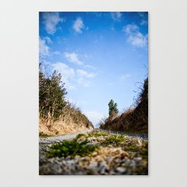 To the lake. Canvas Print