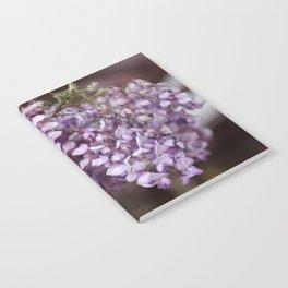 Spring - Wisteria Notebook