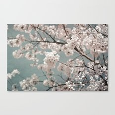 a sky full of blossoms Canvas Print